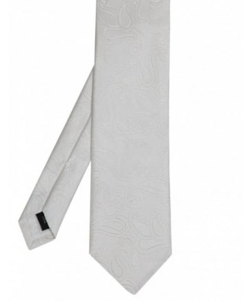 Abstract Paisley Tie
