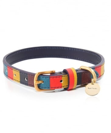 Striped Leather Dog Collar
