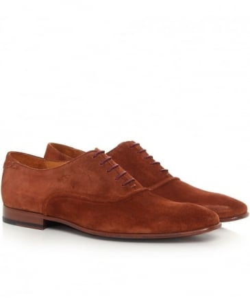 Suede Starling Oxford Shoes